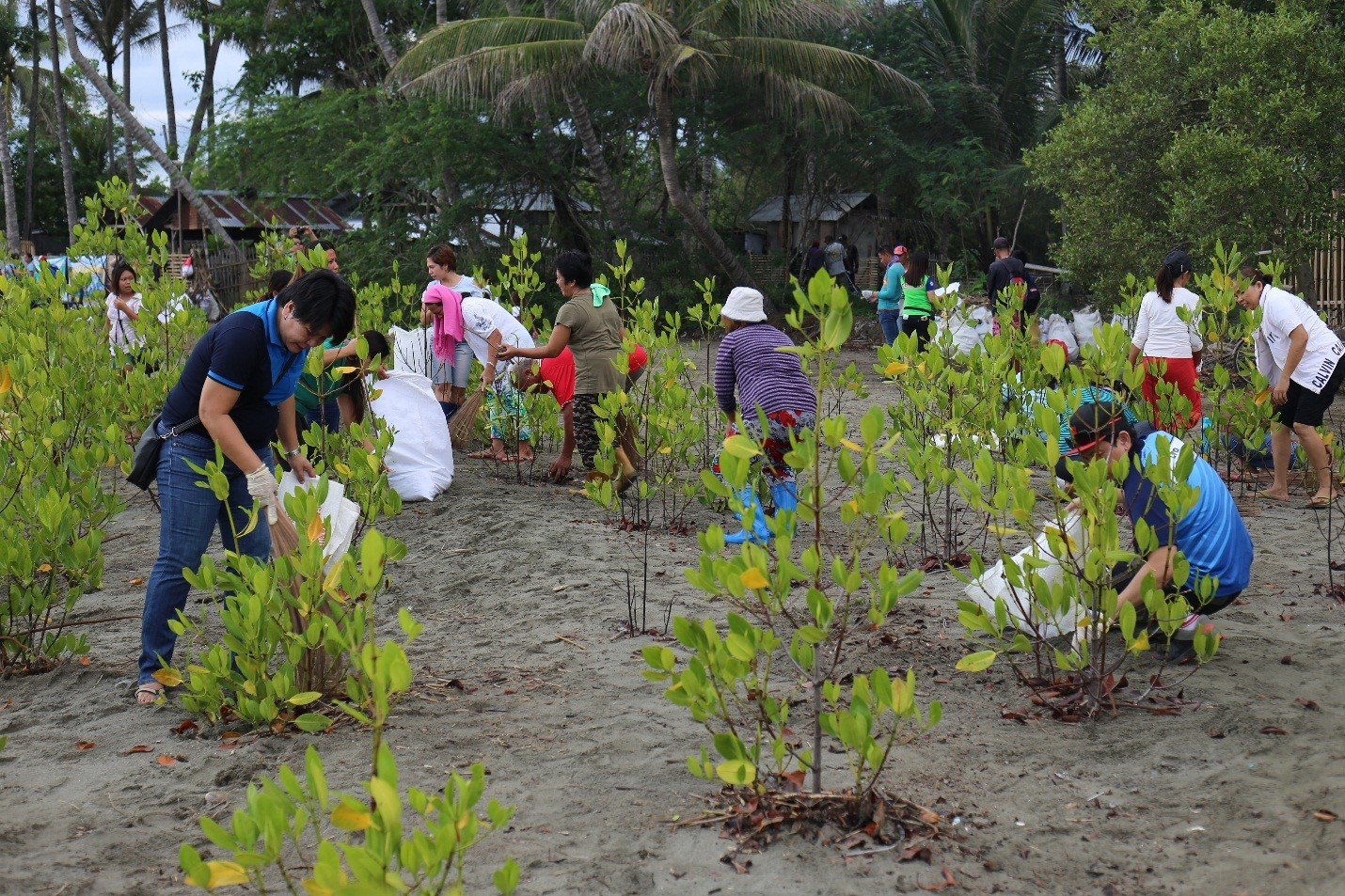 DA joins RDRRMC's coastal cleanup