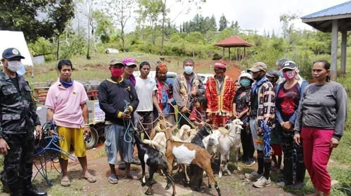 Indigenous People receive livestock from DA 10-SAAD for food production