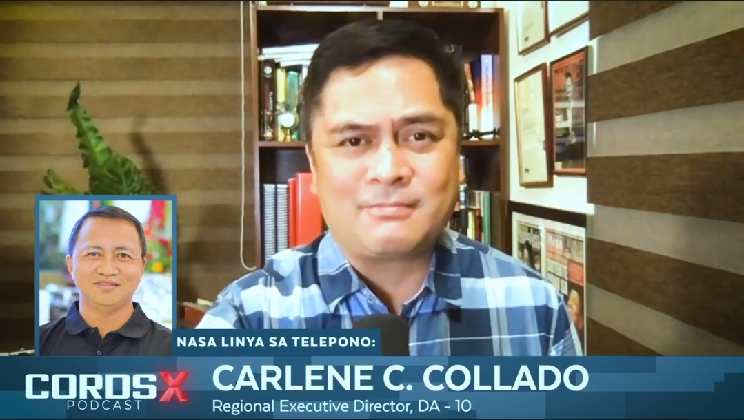 NorMin still ASF-free, bares 1st sem strides: agri exec in CORDS-X podcast