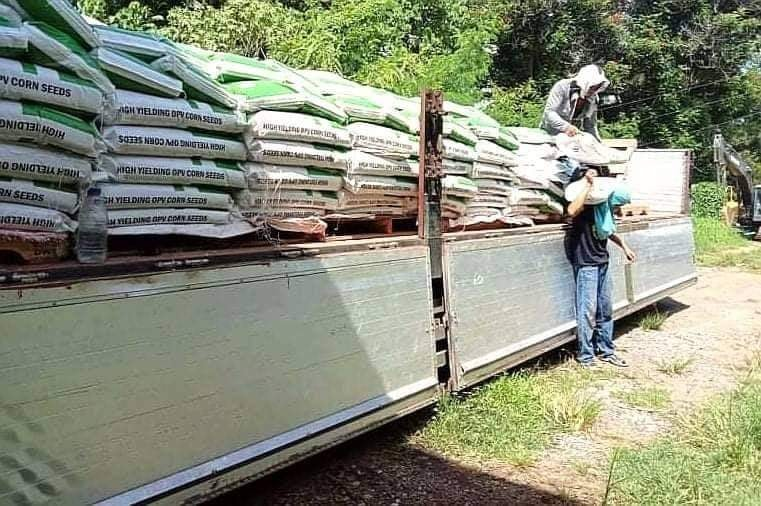 DA-SAAD NorMin allots P775k OPV corn seeds to 2,048 farmers, Philippine Army